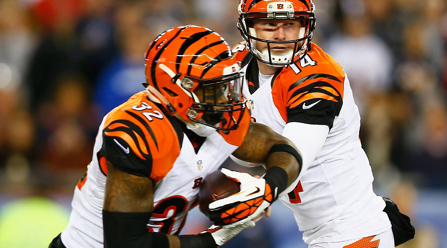 bengals-nfl-betting